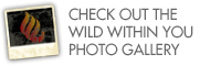 Check out the Wild Within You Photo Gallery